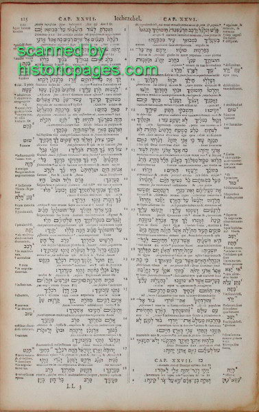 PRBM  BIBLES  ENGLISH