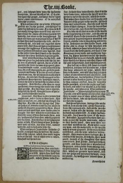 Translate Latin Sentence 12